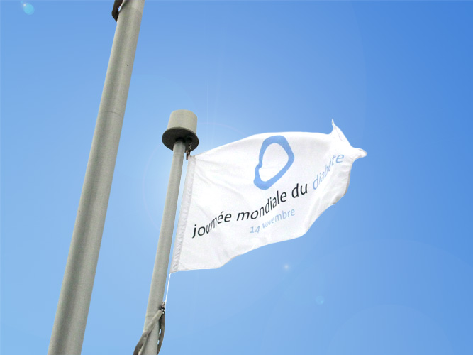 World Diabetes Day Flag - New Brunswick