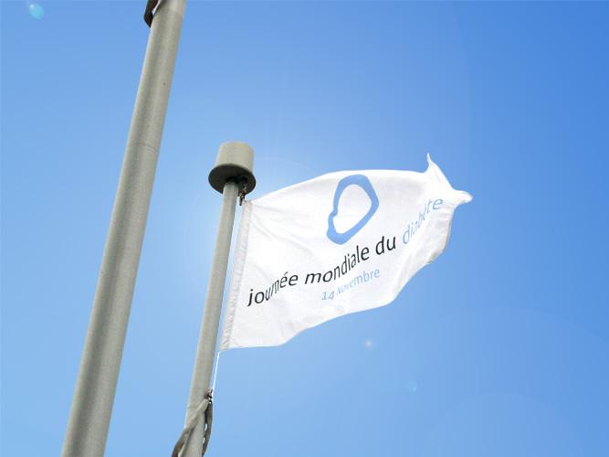 World Diabetes Day Flag - New Brunswick